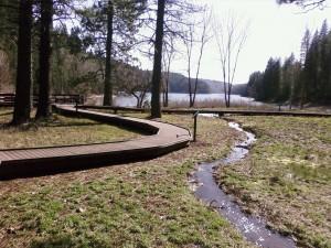 Boardwalk at Hazel Creek